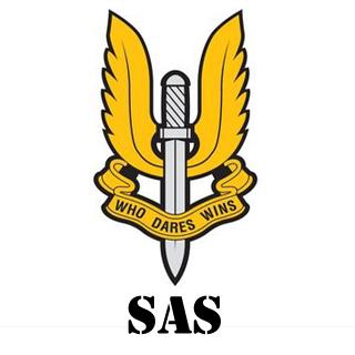 My SAS Emblem : bf4emblems